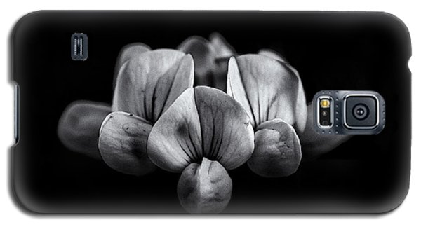 Backyard Flowers In Black And White 5 Galaxy S5 Case