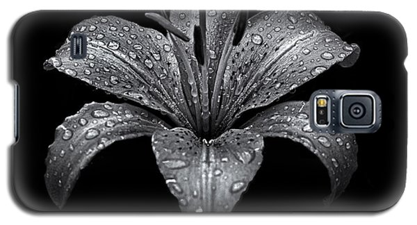 Backyard Flowers In Black And White 8 After The Storm Galaxy S5 Case by Brian Carson