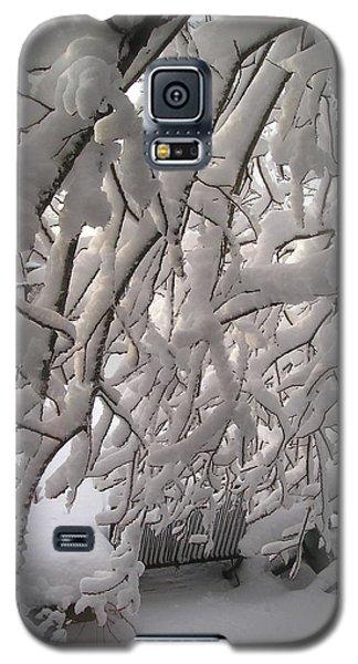 Backyard Galaxy S5 Case