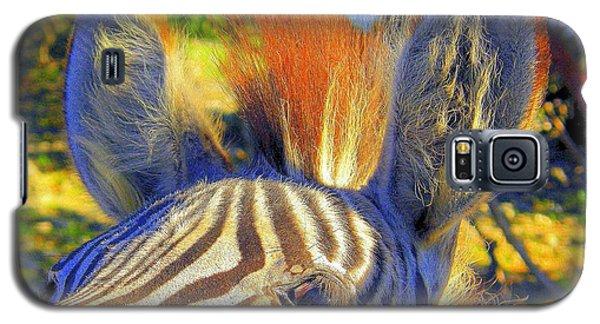 Bad Fur Day Galaxy S5 Case by Antonia Citrino