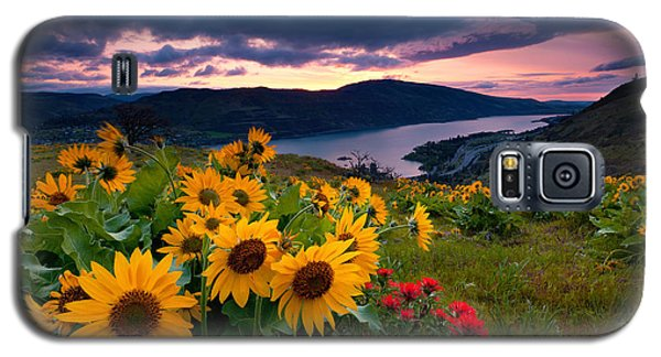Balsam Root Sunrise Galaxy S5 Case