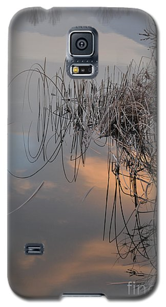 Galaxy S5 Case featuring the photograph Balance Of Elements by Simona Ghidini