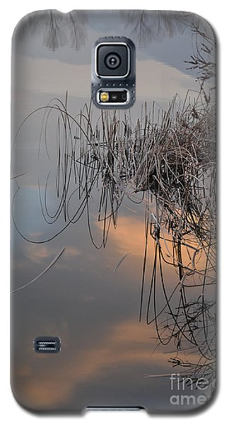 Balance Of Elements Galaxy S5 Case