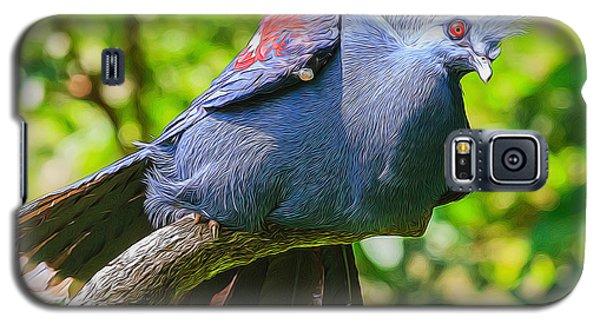 Balanced Pigeon Galaxy S5 Case
