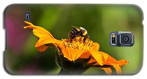 Balancing Bumblebee Galaxy S5 Case