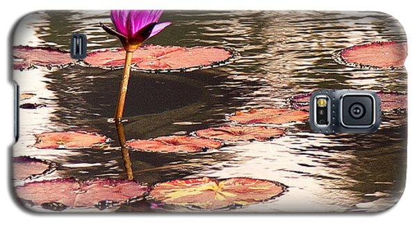 Balboa Park Water Lily Galaxy S5 Case