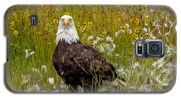 Bald Eagle @ Lunch  Galaxy S5 Case