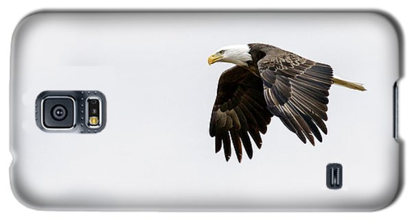 Galaxy S5 Case featuring the photograph Bald Eagle 3 by David Lester