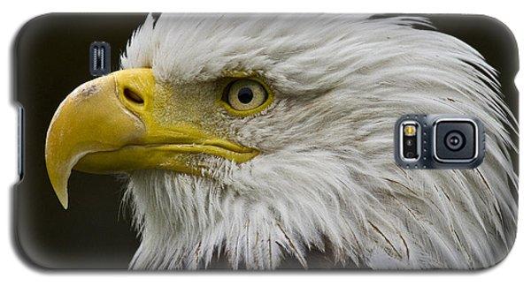 Bald Eagle - 7 Galaxy S5 Case
