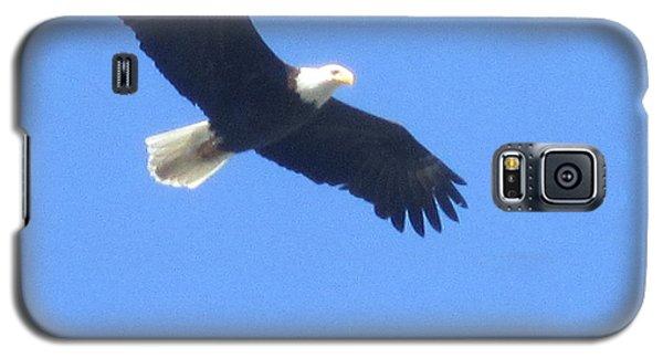 Bald Eagle At Lake Rowena Galaxy S5 Case by Jeffrey Koss