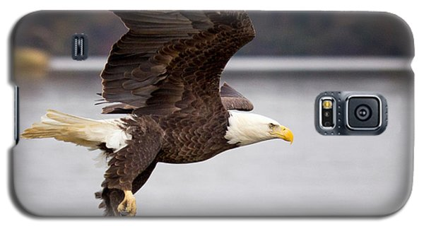 Galaxy S5 Case featuring the photograph Bald Eagle Flight by Alan Raasch