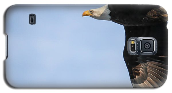 Galaxy S5 Case featuring the photograph Bald Eagle In Flight by Eleanor Abramson