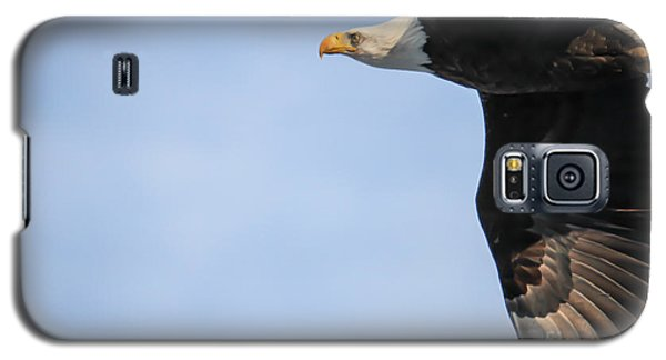 Bald Eagle In Flight Galaxy S5 Case by Eleanor Abramson