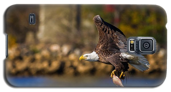 Bald Eagle In Flight Over Water Carrying A Fish Galaxy S5 Case