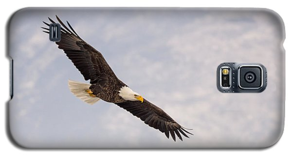 Bald Eagle In Full Extension Galaxy S5 Case