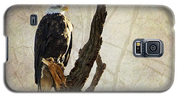 Bald Eagle Keeping Watch In Illinois Galaxy S5 Case by Luther Fine Art