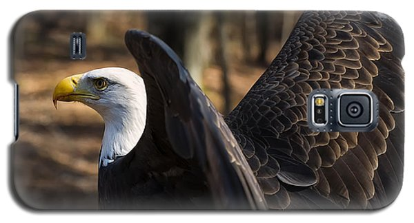 Bald Eagle Preparing For Flight Galaxy S5 Case by Chris Flees