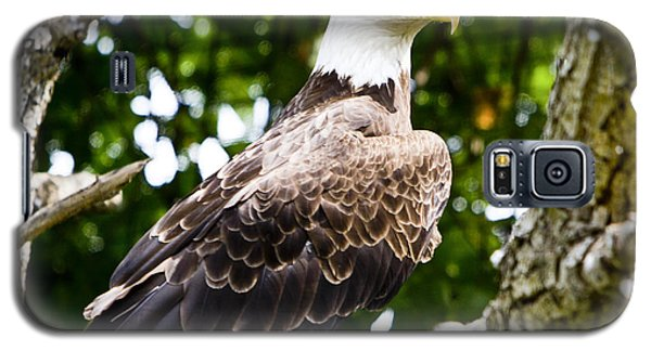 Galaxy S5 Case featuring the photograph Bald Eagle by Ricky L Jones
