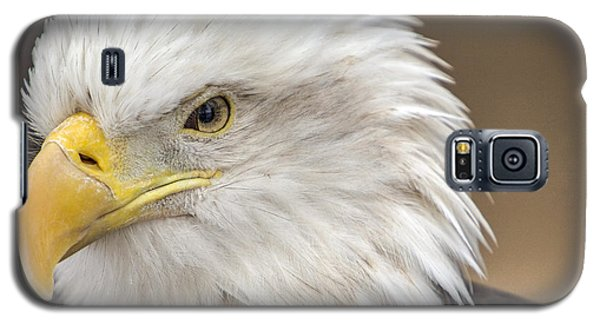 Galaxy S5 Case featuring the photograph Bald Eagle by Robert  Aycock