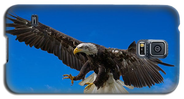 Bald Eagle Galaxy S5 Case by Scott Carruthers