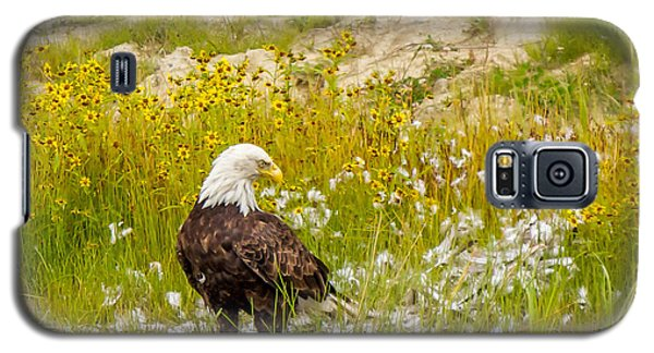 Bald Eagle  Galaxy S5 Case by Trace Kittrell