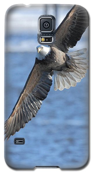 Bald Eagle Turn Galaxy S5 Case