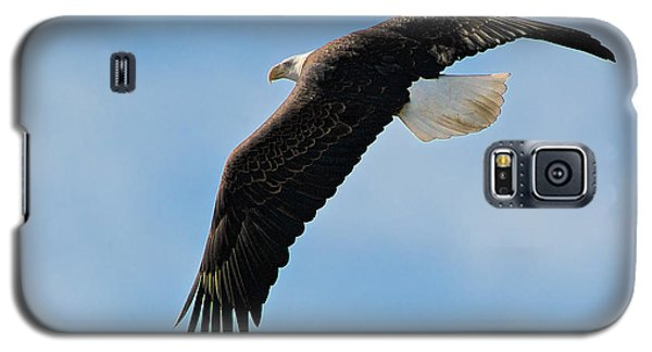Galaxy S5 Case featuring the photograph Bald Eagle Turning by Stephen  Johnson
