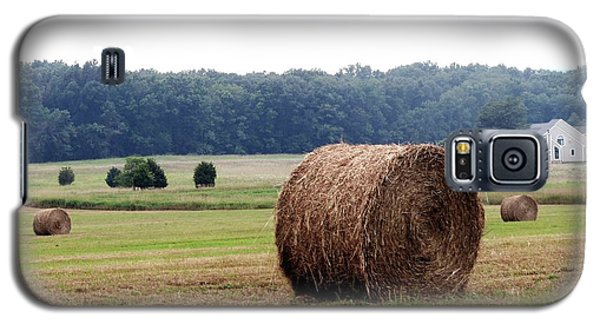 Bales In Solebury Galaxy S5 Case