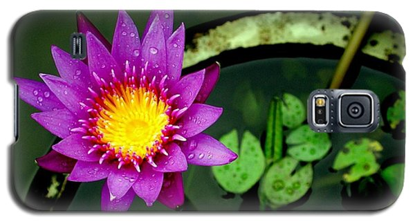 Galaxy S5 Case featuring the photograph Bali Flora 2 by Antonia Citrino
