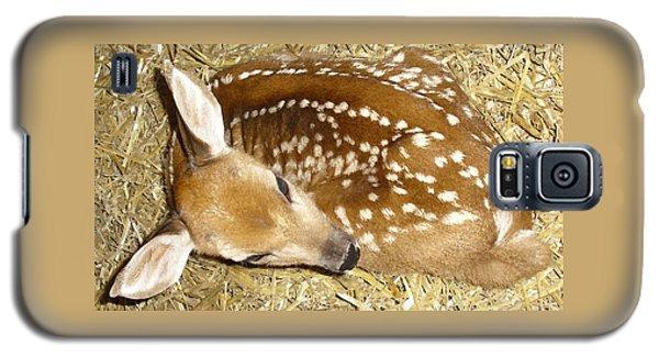 Bambi Galaxy S5 Case