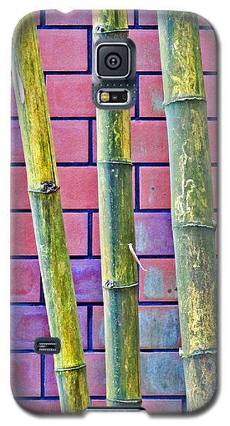 Galaxy S5 Case featuring the photograph Bamboo And Brick by Ethna Gillespie