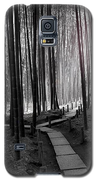 Bamboo Grove At Dusk Galaxy S5 Case