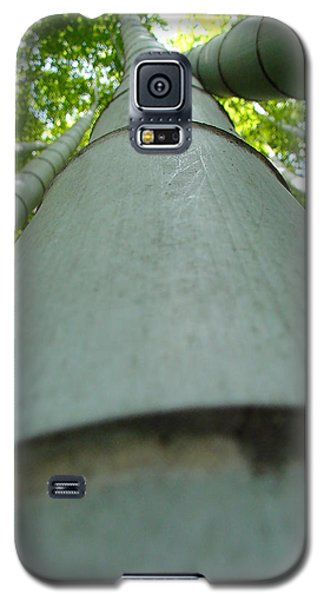 Galaxy S5 Case featuring the photograph Bamboo Grove In Morning by Larry Knipfing