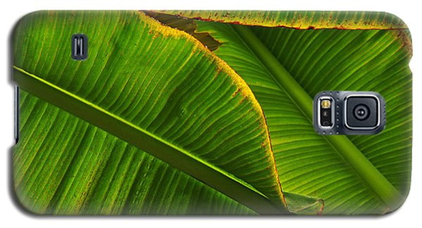 Banana Leaves Galaxy S5 Case