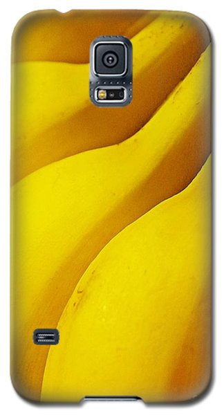 Bananas Galaxy S5 Case by Sarah Loft