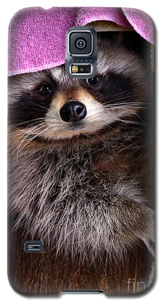 Galaxy S5 Case featuring the photograph Bandit by Adam Olsen