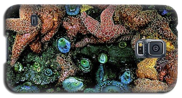 Bandon Beach Oregon Pacific Tidal Pool Galaxy S5 Case