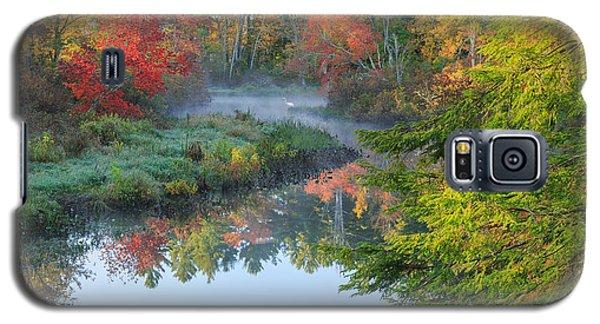 Bantam River Autumn Galaxy S5 Case