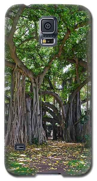 Banyan Tree At Honolulu Zoo Galaxy S5 Case
