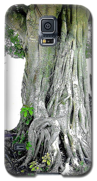 Galaxy S5 Case featuring the photograph Banyon Tree No. 2 by Merton Allen