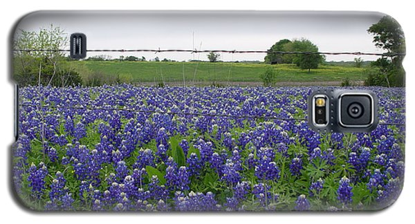 Barbed Wire Bluebonnets Galaxy S5 Case by Jerry Bunger