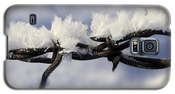 Barbed Wire Frost 2 Galaxy S5 Case