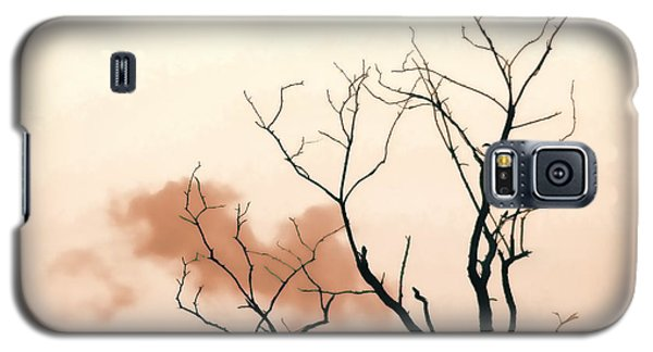 Galaxy S5 Case featuring the photograph Bare Limbs by Denise Romano
