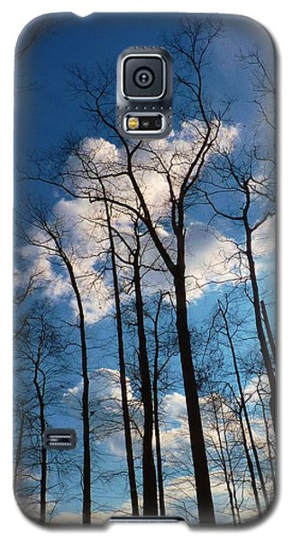 Galaxy S5 Case featuring the photograph Bare Trees Fluffy Clouds by Jeanette Oberholtzer