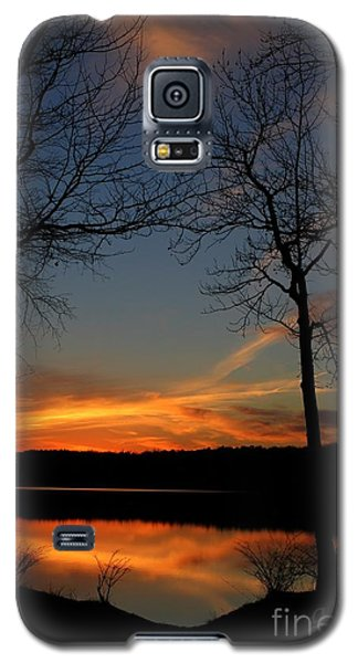 Bare Trees Vertical Galaxy S5 Case by Geri Glavis