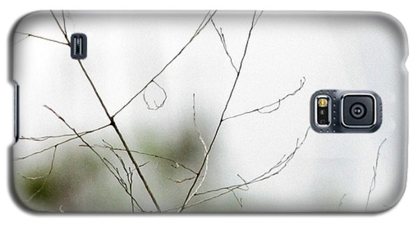 Barest Branches Galaxy S5 Case by Kimberly Mackowski