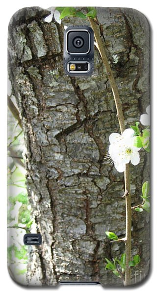 Bark And Blossoms Galaxy S5 Case