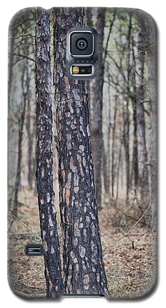 Bark Galaxy S5 Case