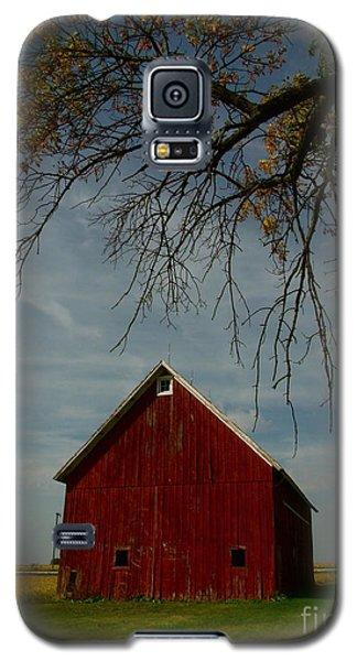 Barn And Box Elder Galaxy S5 Case by Tim Good