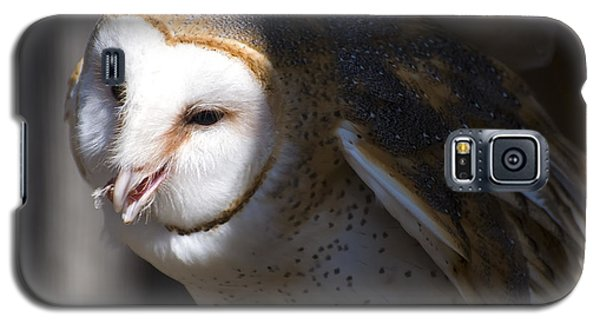 Barn Owl 1 Galaxy S5 Case by Chris Flees